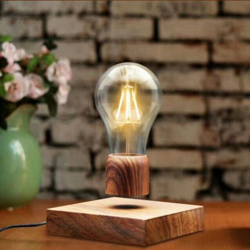 Magnetic Levitation Light Bulb - Brown