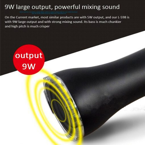 Portable Magic Karaoke Microphone Speaker With SD Card Recording - Black