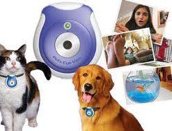 Digital Mini Pet Eye View Camera
