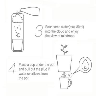 Wall Mount Rainy Pot Flower Pot